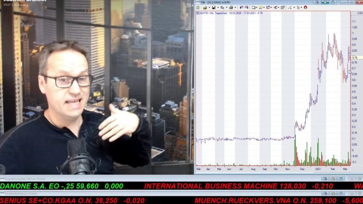 SmallCap-Investor Talk 1156 über VW, BMW, Tesla, Schaeffler, Conti, Organic Garage
